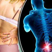Симптоми на болките в гърба